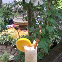 Pina Colada Redemption: The Painkiller